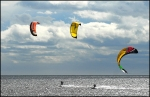 Boundary Bay Kites 1